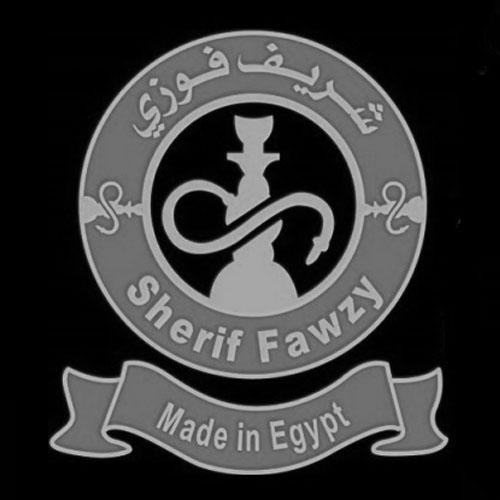 Sherif Fawzy (Египет)