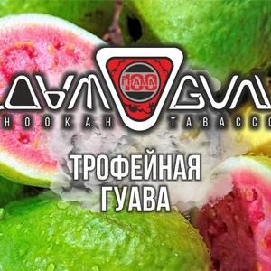 Табак Дымоган Трофейная Гуава 100 г